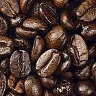 Caffen-Espresso Golden Bar Blend Maxima