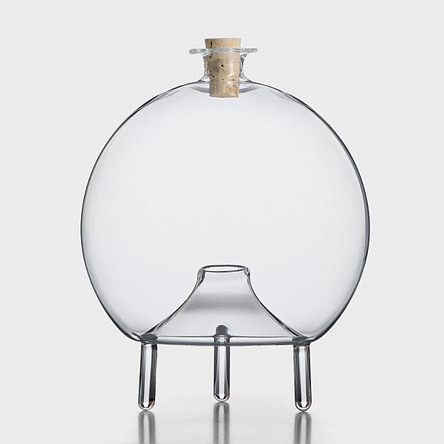 Wespenfalle Glas