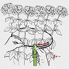 Pflanzenhalter 2er-Set